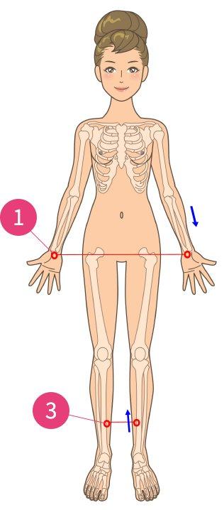 胆石症、胆のう炎
