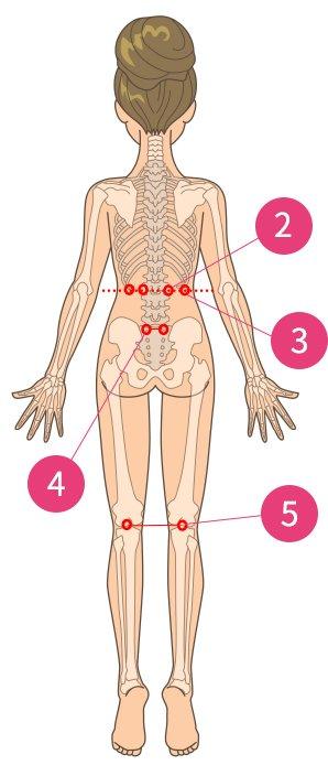 腰の痛み(慢性腰痛)