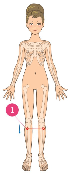 足・腰の筋肉痛